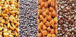 MSP 2022-23 for Rabi crops