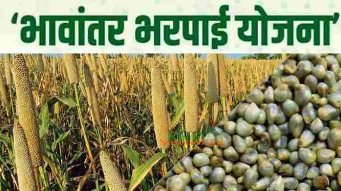 bhavantar bharpai yojna bajra kharid