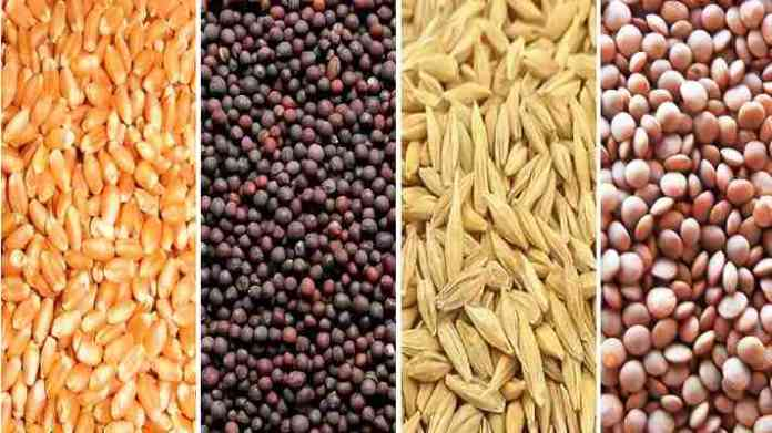 beej anudan rabi crop