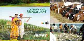 kcc loan for fisheries & animal husbandry