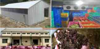 pack house onion storage hdpe bed anudan avedan
